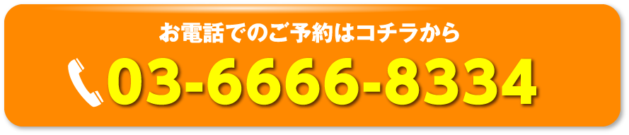 お問い合わせ先:03-6666-8334